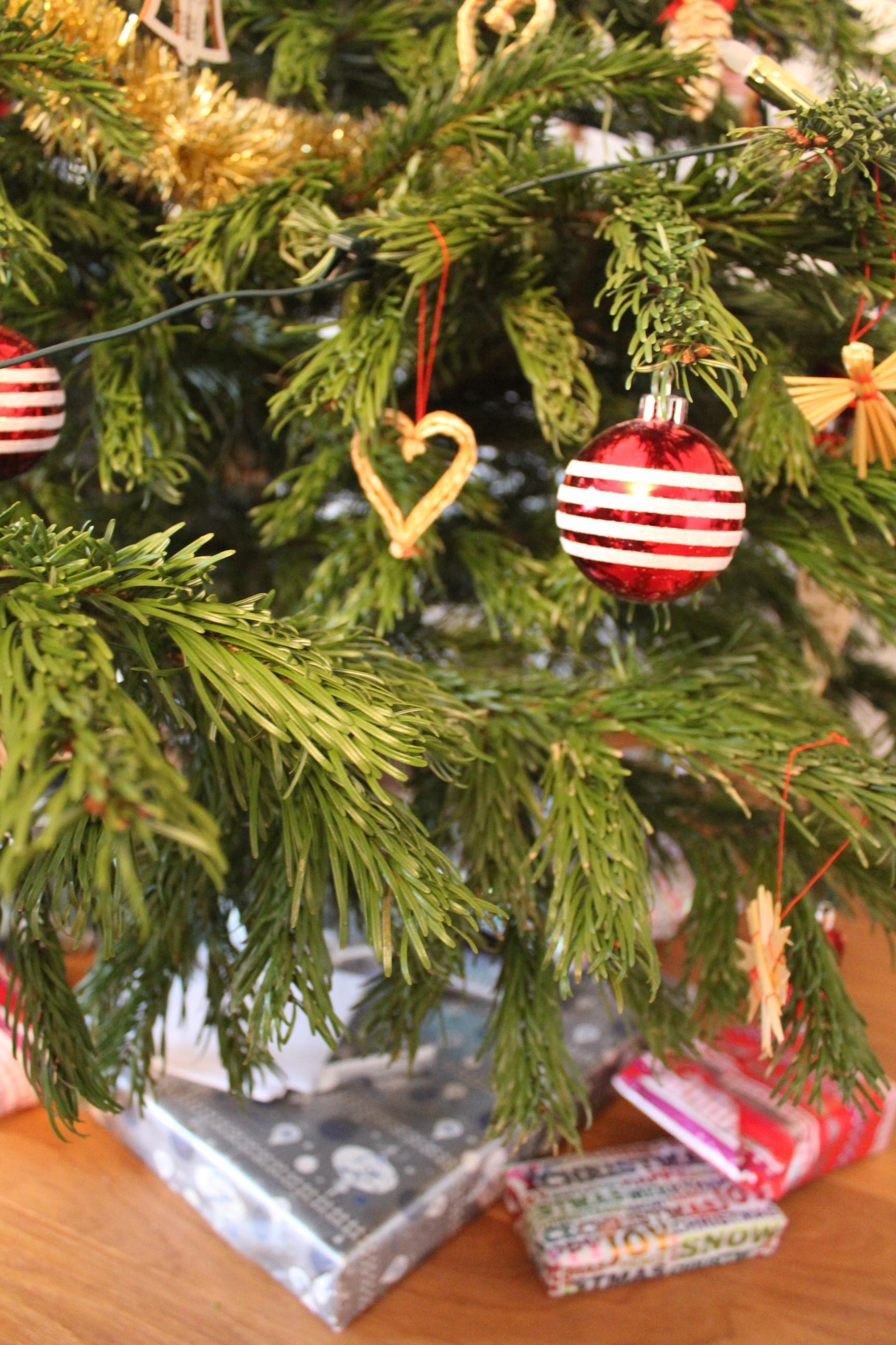 100 christmas tree last longer how to make your christmas tree last longer stop your - Make christmas tree last longer ...